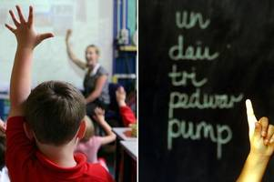welsh medium schools account for nearly half of all school closures during the last decade