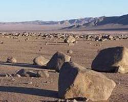 Detecting Life in the Driest Place on Earth