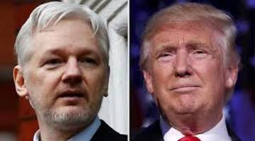 trump: if the doj wants to arrest assange, it's ok with me