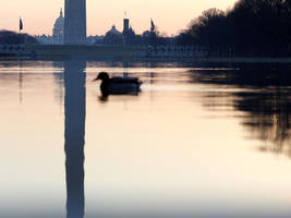 what will happen if the government shuts down? 7 things to know