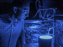 artificial photosynthesis cleans air and produces energy