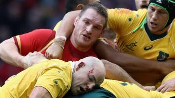 autumn internationals: wales face southern hemisphere big three