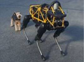 Google's robot dog makes its first delivery in Boston