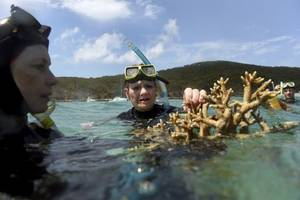 man-made clouds 'could save barrier reef'