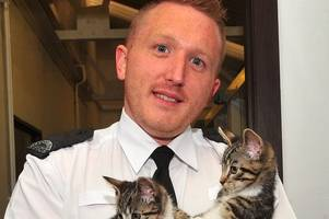 dumbarton animal shelter boss caught with child abuse images dodges jail