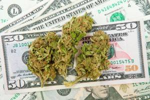 Can You Become a Marijuana Millionaire with These Hot Stocks?