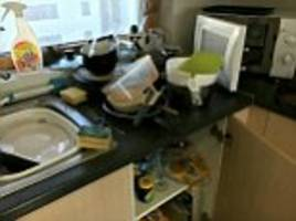 teenager has the uk's most disgusting student digs