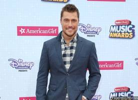 Chris Soules Called 911 After Deadly Car Crash, Tried to Help Victim