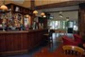 golden pheasant in shelton lock has been sold but will stay as a...