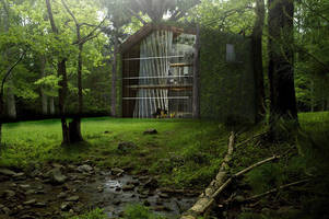 tree-incorporating concept house recycles water and may inspire future homes