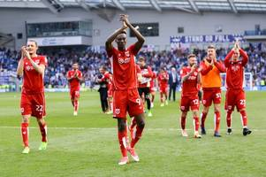 Brighton and Hove Albion 0 Bristol City 1: Robins secure Championship status after spoiling promotion party for the Seagulls at the Amex