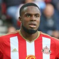 english premier league: anichebe goes down with sunderland