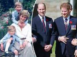 william and harry to open up about diana in documentary