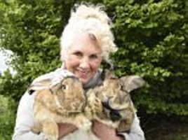 united airlines pay compensation to rabbit breeder