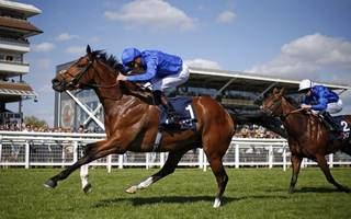 horse racing betting tips: barney roy can upset churchill in 2000 guineas