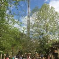 drop line opens may 6 at dollywood