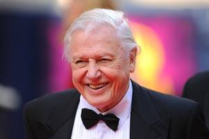 sir david attenborough turns 91 today - here are 10 times he stole our hearts