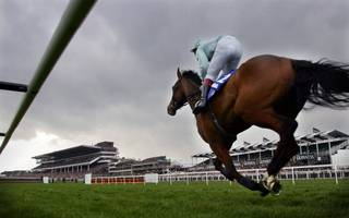 william hill reports revenue growth and says transformation is on track