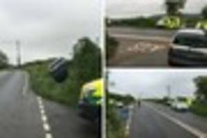 Car leaves road and ends up in hedge in dramatic South Devon...