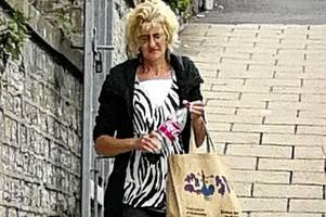 yeovil woman kelly anderson fined for keeping 26 cats and stashing nine into one pet carrier
