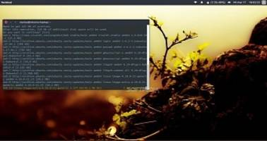 Canonical Releases New Kernel Security Update for Ubuntu 16.10, 16.04 and 14.04