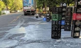 Milk Delivery Truck Spills Most of Cargo on Road, Nobody Cried Over It