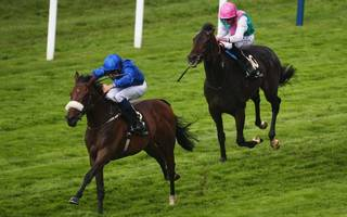 horse racing betting tips: more group one honours for ribchester
