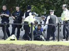 Man held by armed police outside Buckingham Palace