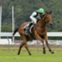 racing: offshore buyers come calling