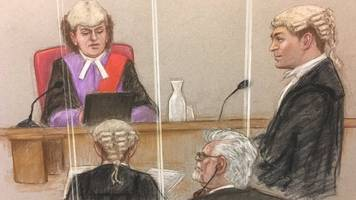 Rolf Harris is 'either innocent or an idiot' defence lawyer says