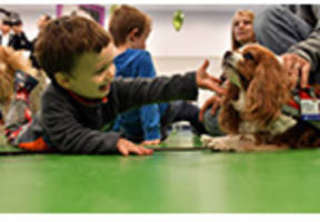 Boston Children's Hospital Receives $360,000 Grant from PetSmart Charities® to Expand the Pawprints Animal Assisted Therapy Program