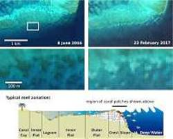 Sentinel-2 captures coral bleaching of Great Barrier Reef