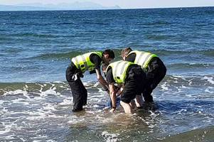 girvan police officers spring to action to rescue distressed dolphin stranded in shallow water on ayrshire coast