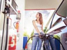 Oil stocks drive petrol price to seven-month low