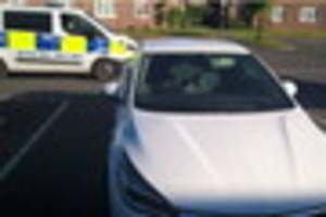 banned driver has car with no insurance seized by police