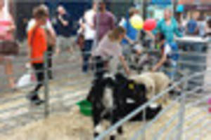 here's a taster of what to expect at the lincolnshire show