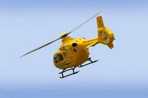 man and woman hospitalised after car crashes into tree near yeovil