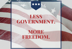 less government. more freedom.