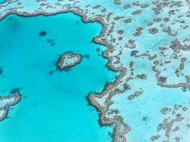 Great Barrier Reef bleaching worse than first thought