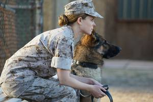 'megan leavey' review: kate mara is semper fi for man's best friend