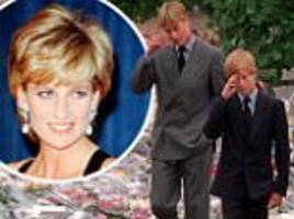 prince harry couldn't believe diana had died