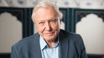 sir david attenborough's regrets missed family time