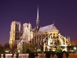 hammer-wielding assailant at paris' notre dame reported saying 'this is for syria'