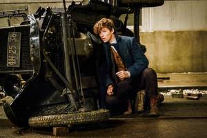 'fantastic beasts 2' to see teen dumbledore, teen newt and teen grindelwald