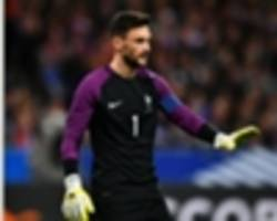 'they surprised us in the first match' - lloris wary of sweden's new post-ibrahimovic generation