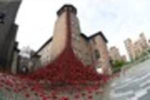 'beautiful and wonderful - your thoughts on poppies at silk mill