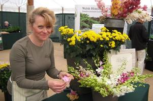 a welsh woman is travelling all the way to barbados - to compete against the world's best flower arrangers