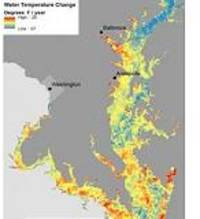 larger-than-normal dead zone expected in chesapeake bay this summer