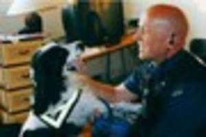 Retired dog handler from Essex Police awarded medal in the 2017...