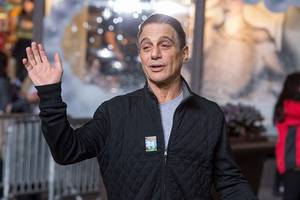 Tony Danza to Return to TV With Netflix Dramedy 'The Good Cop'